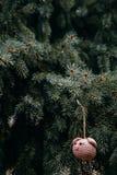 Rosa Schweinkopf der Häkelarbeit auf dem Weihnachtsbaum lizenzfreies stockbild