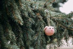 Rosa Schweinkopf der Häkelarbeit auf dem Weihnachtsbaum lizenzfreie stockfotos