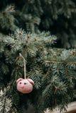 Rosa Schweinkopf der Häkelarbeit auf dem Weihnachtsbaum stockfoto