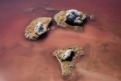 Rosa See, voll vom Salz Stockfotos