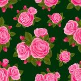 Rosa senza cuciture Fotografie Stock