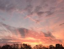 rosa sky Arkivfoton