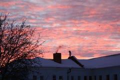 rosa sky Arkivfoto