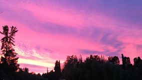 rosa sky för natt Arkivfoto