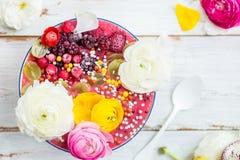 Rosa Smoothie från bananen och Forest Berries i bunken med rommar royaltyfria foton