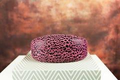 rosa solglasögon för fall Royaltyfria Bilder