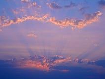 rosa solljus Royaltyfri Fotografi