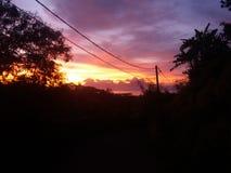 rosa solnedgång Royaltyfria Foton