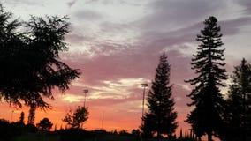 rosa solnedgång Arkivfoto