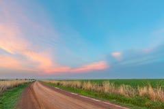 rosa solnedgång för oklarheter Arkivfoto