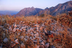 Rosa solnedgång i bergen av Uzbekistan Royaltyfri Fotografi