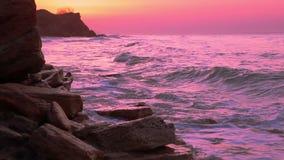 Rosa soluppgång över havet arkivfilmer