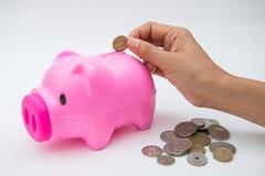 Rosa spargris med myntet för räddning dina pengar Arkivbild