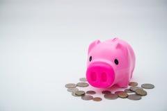 Rosa spargris med myntet för räddning dina pengar Fotografering för Bildbyråer