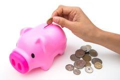 Rosa spargris med myntet för räddning dina pengar Arkivbilder