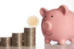 Rosa spargris och bunt av mynt som växer upp med myntet för euro två Arkivfoton