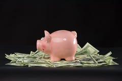 Rosa Sparschwein, das auf Dollar steht Stockbilder