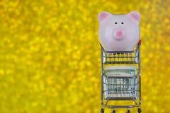 Rosa Sparschweinschwein, das auf Minieinkaufsstoßwarenkorb mit US steht Lizenzfreie Stockbilder