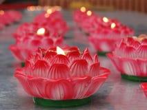 Rosa stearinljus i lotusblomma bildar i en tempel i Chengdu Arkivbilder
