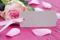 Rosa stieg mit Geschenkmarke Stockbild