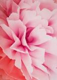 Rosa stort blommapapper Royaltyfri Fotografi
