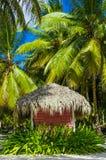 Rosa stuga med ett halmtäckt tak på den karibiska stranden Royaltyfri Bild