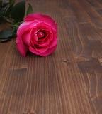 Rosa su fondo di legno Fotografie Stock