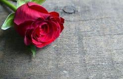 Rosa su fondo di legno per il giorno del ` s del biglietto di S. Valentino con lo spazio della copia Valentine Rose Fotografie Stock
