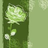 Rosa su una priorità bassa verde Immagine Stock