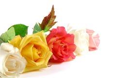 Rosa sul bianco Fotografia Stock Libera da Diritti