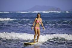 rosa surfa för bikiniflicka Royaltyfria Bilder