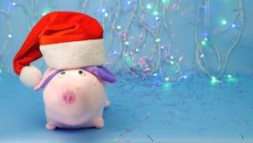 Rosa svin för mjuk leksak i en röd Santa Claus hatt på en blå bakgrund, ljus för nytt år och ett glitter, året av svinet 2019 lager videofilmer