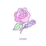 Rosa symbolstecken 01 Royaltyfri Bild