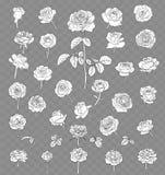 Rosa teckningsuppsättning som isoleras på genomskinlig bakgrund tecknad hand Royaltyfri Fotografi
