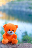 Rosa Teddybär über der Klippe in der untergehenden Sonne Stockfotos