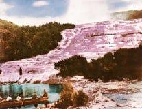 Rosa Terrassen - Neuseeland lizenzfreie stockbilder