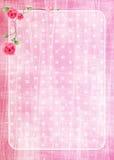 rosa textur Arkivbild