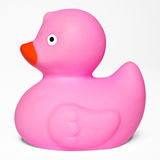Rosa Toy Rubber Duck Fotografering för Bildbyråer