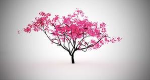 Rosa träd Royaltyfri Foto