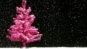 Rosa trädsnöfall stock video