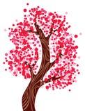 rosa tree Arkivfoton