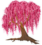 rosa tree royaltyfri illustrationer