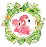 Rosa treibt gezeichnete Illustration des Flamingoaquarells Hand in der Anordnung mit grünen tropischen Anlagen, exotischem monste Stockfotografie