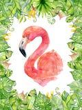 Rosa treibt gezeichnete Illustration des Flamingoaquarells Hand in der Anordnung mit grünen tropischen Anlagen, exotischem monste Stockbild