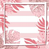 Rosa tropiska sidor med ramen görad randig bakgrund Arkivbild