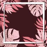 Rosa tropiska sidor på den mörka bakgrunden Royaltyfri Fotografi