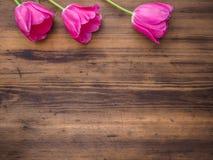 Rosa tulpan, blom- ordning på träbakgrund från gamla bräden och ett utrymme för meddelanden Bakgrund för moder` s Royaltyfri Bild