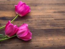 Rosa tulpan, blom- ordning på träbakgrund från gamla bräden och ett utrymme för meddelanden Bakgrund för moder` s Arkivfoto