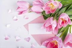 Rosa tulpan med ett tomt kort Royaltyfria Bilder