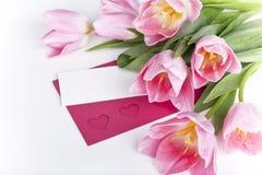 rosa tulpan med ett tomt kort för hälsningar Arkivfoto